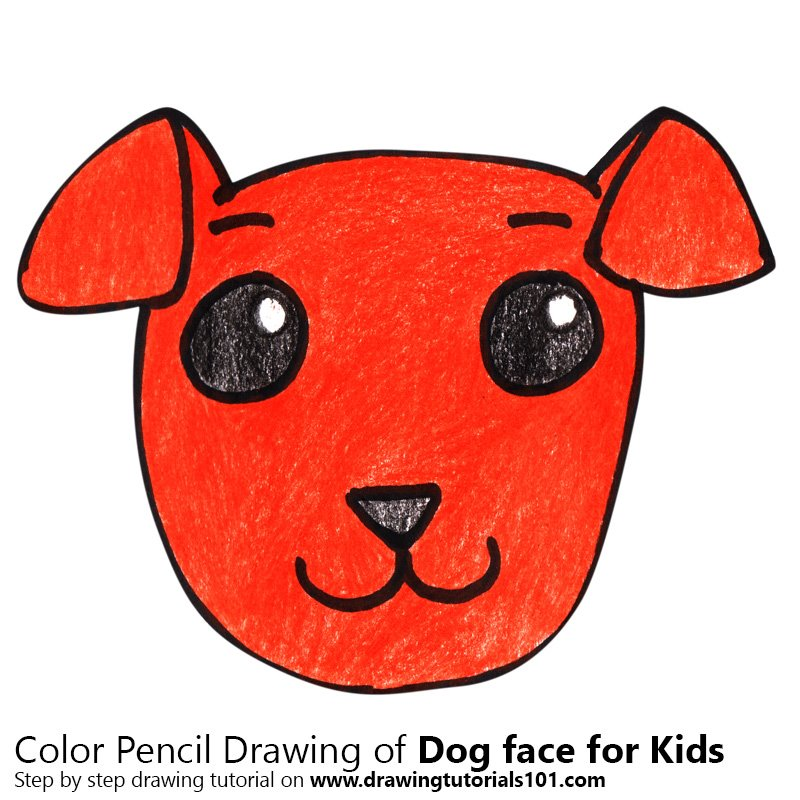 Dog Face for Kids Color Pencil Drawing