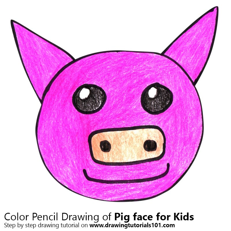 Pig Face for Kids Color Pencil Drawing