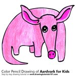 How to Draw an Aardvark for Kids