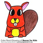 How to Draw a Beaver for Kids