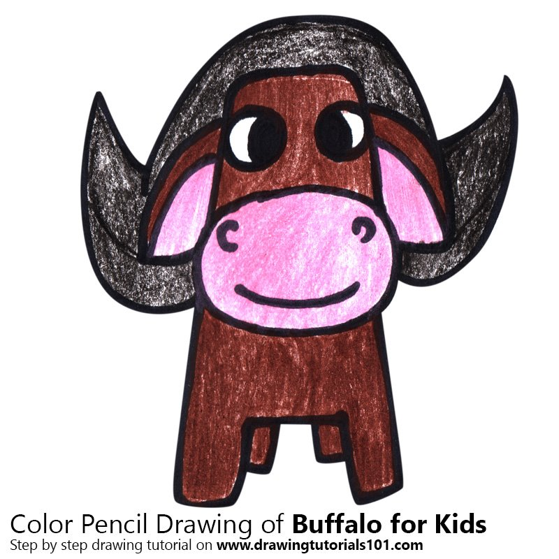Buffalo for Kids Color Pencil Drawing
