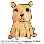 How to Draw a Capybara for Kids