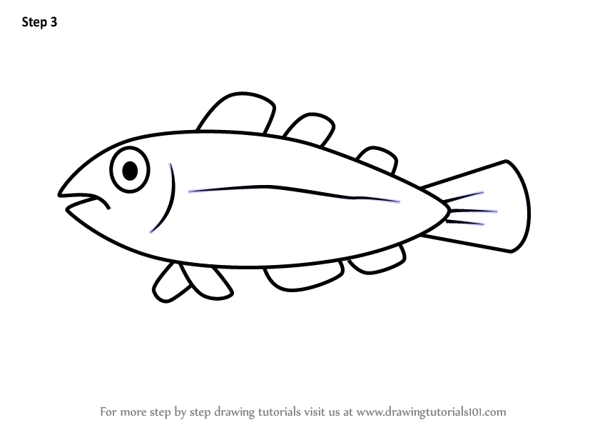 Learn How to Draw a Cool Fish for Kids (Animals for Kids ...