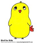 How to Draw a Cute Bird for Kids