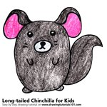 How to Draw a Long - tailed Chinchilla for Kids
