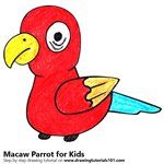 How to Draw a Macaw Parrot for Kids