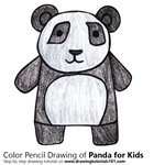 How to Draw a Panda for Kids