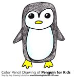 How to Draw a Penguin for Kids Easy