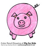 How to Draw a Pig for Kids Easy
