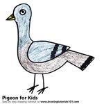 How to Draw a Pigeon for Kids