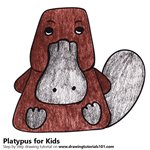 How to Draw a Platypus for Kids