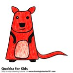 How to Draw a Quokka for Kids