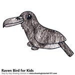 How to Draw a Raven Bird for Kids