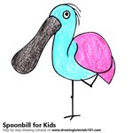 How to Draw a Spoonbill for Kids