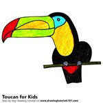 How to Draw a Toucan for Kids