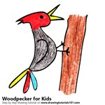 How to Draw a Woodpecker for Kids