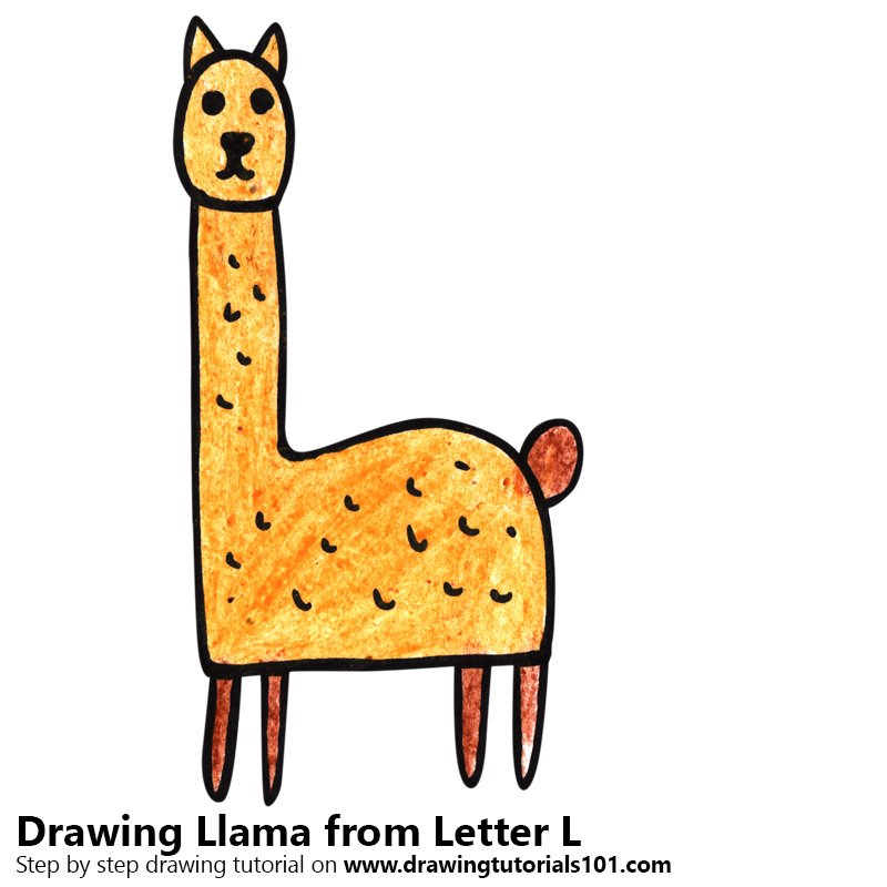 Llama from Letter L Color Pencil Drawing
