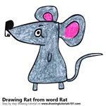 How to Draw a Rat from word Rat
