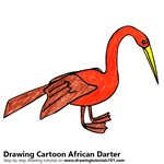 How to Draw a Cartoon African Darter