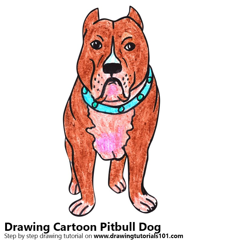Cartoon Pitbull Dog Color Pencil Drawing