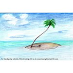 How to Draw a Palm Tree on Island