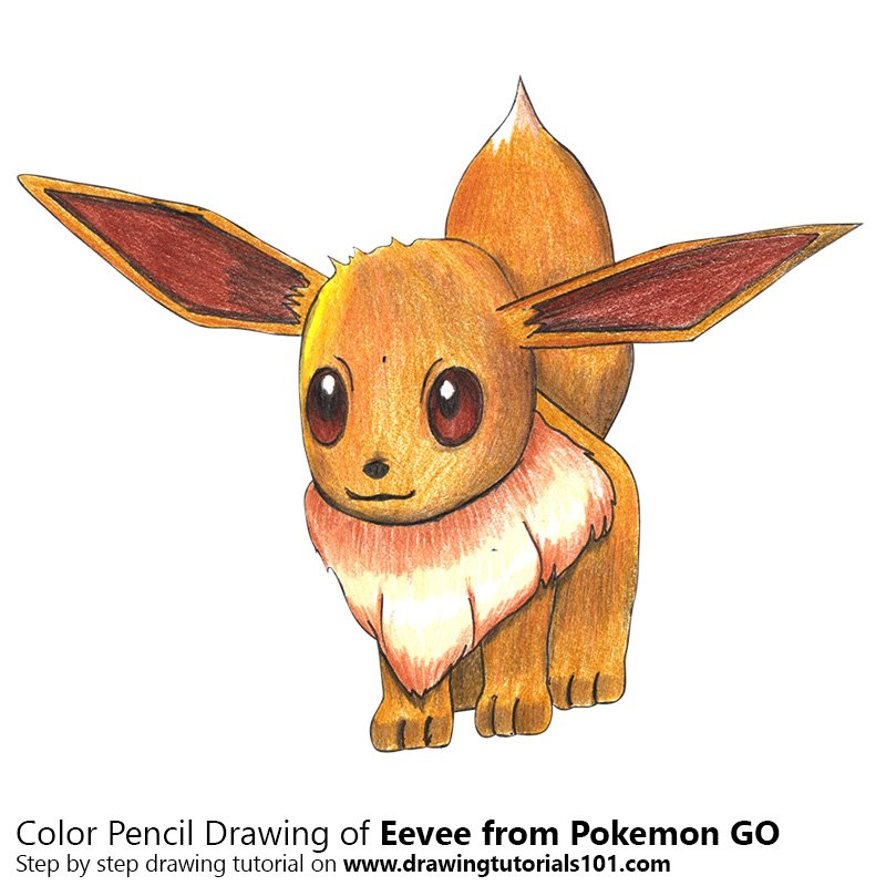 Eevee from Pokemon GO Color Pencil Drawing
